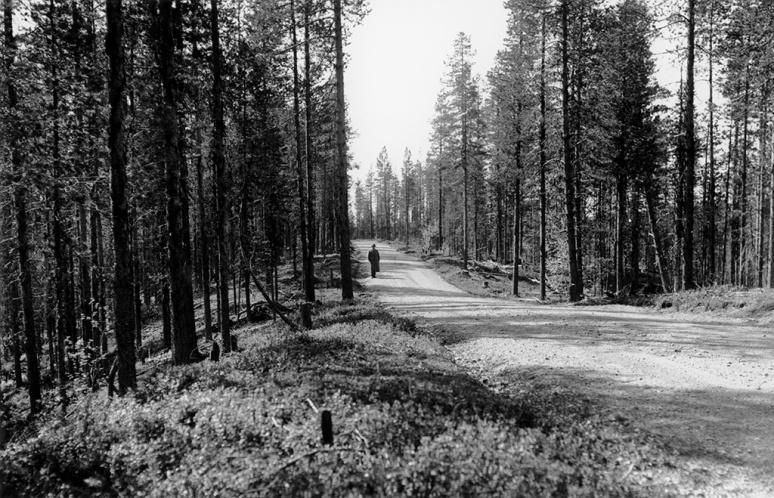 Västerbotten, Sorsele, Sorsele, Lappland, Övrigt-Vägar